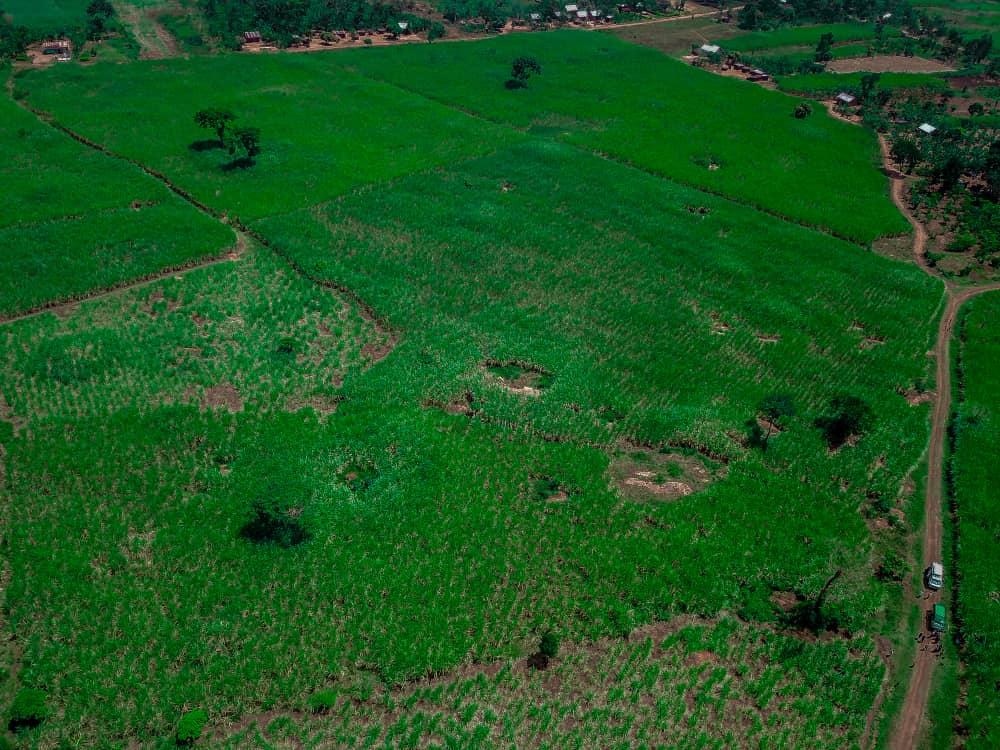 Land Acquired in Luuka!!!